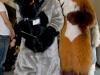 kemocon2009_0158